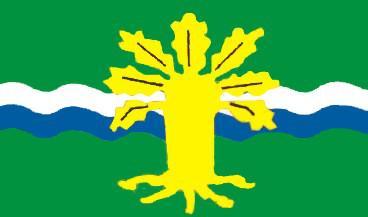 Flagge Fahne Nottinghamshire 90 x 150 cm - Vorschau
