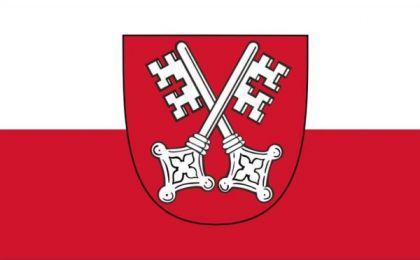 Flagge Fahne Regensburg 90 x 150 cm - Vorschau