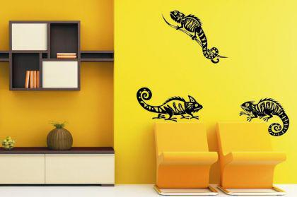 chameleons g nstig sicher kaufen bei yatego. Black Bedroom Furniture Sets. Home Design Ideas