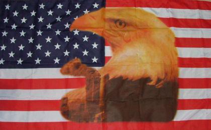 Flagge Fahne USA großer Adler 90 x 150 cm - Vorschau