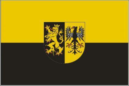 Flagge Fahne Vogtland 90 x 150 cm - Vorschau