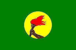 Flagge Fahne Zaire 90 x 150 cm - Vorschau