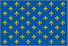 Flagge Fahne Lilienbanner blau 90 x 150 cm