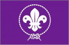 Flagge Fahne Pfadfinder Scouts 90 x 150 cm