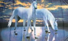 Flagge Fahne Pferde 90 x 150 cm