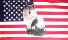 Flagge Fahne USA Wolf mit Adler 90 x 150 cm