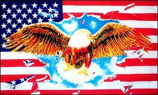 Flagge Fahne USA Adler 90 x 150 cm