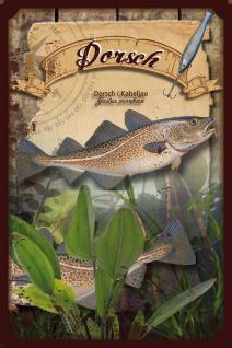 Fische - Dorsch Blechschild