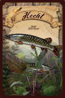 Fische - Hecht Blechschild - Vorschau
