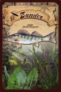 Fische - Zander Blechschild