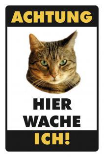 Hier wache ich - Katze braun Blechschild