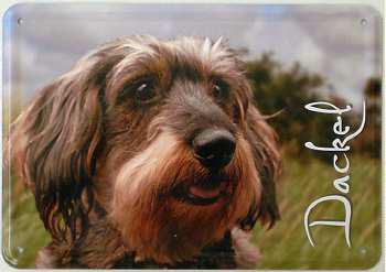 Blechpostkarte Hunde - Dackel - Vorschau