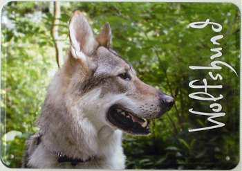 Blechpostkarte Hunde - Wolfshund - Vorschau
