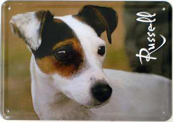 Blechpostkarte Hunde - Russell - Vorschau