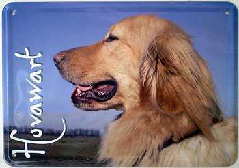 Blechpostkarte Hunde - Hovawart - Vorschau