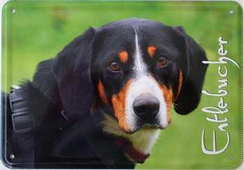 Blechpostkarte Hunde - Entlebucher - Vorschau