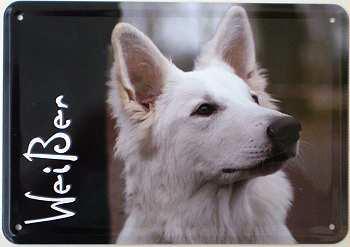 Blechpostkarte Hunde - Weißer - Vorschau