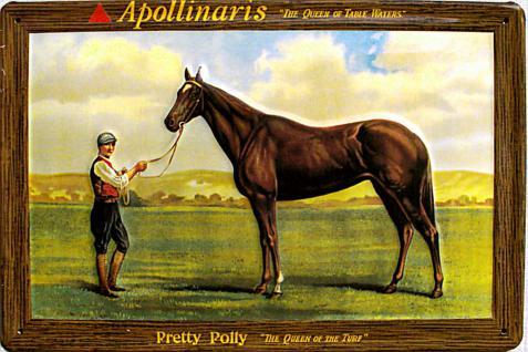 ApollinarisThe Queen Of Table Waters Blechschild