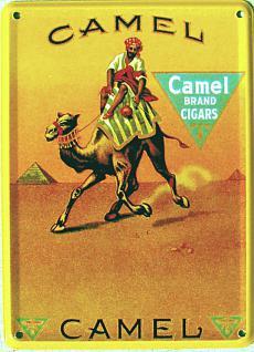Camel Mini Blechschild