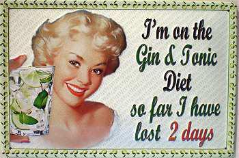 Gin & Tonic Diet Blechschild