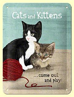 Cats and Kittens Blechschild /15 x 20 cm)