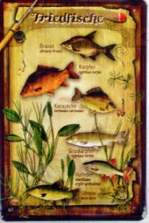 Friedfische Blechschild - Vorschau