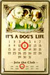 It's a Dog's Life Kalender Blechschild