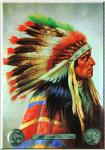 Indianer Chief John Big Tree Blechschild