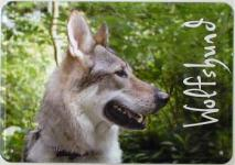 Blechpostkarte Hunde - Wolfshund