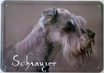 Blechpostkarte Hunde - Schnauzer