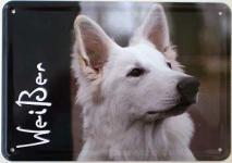 Blechpostkarte Hunde - Weißer