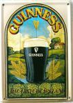 Guinness The Taste of Ireland Mini Blechschild