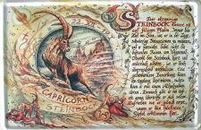 Sternzeichen Steinbock Blechschild
