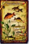 Friedfische Blechschild