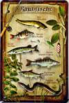Raubfische Blechschild