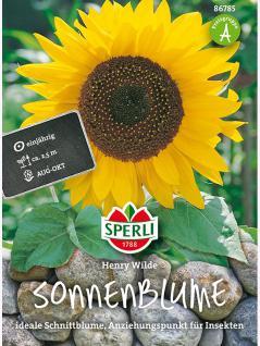 Sonnenblume, Henry Wilde