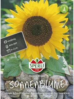 Sonnenblume Henry Wilde