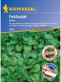 Feldsalat Favor tolerant Saatband 5mtr