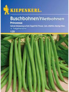 Buschbohnen Prinzessa verbesserte Doppelte Holl. Prinzess 125gr