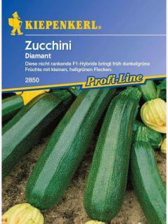 Zucchini Diamant grün