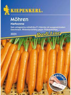 Möhren Narbonne Saatband 5mtr