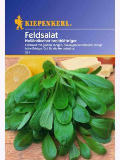 Feldsalat Holländischer breitblättriger Portion
