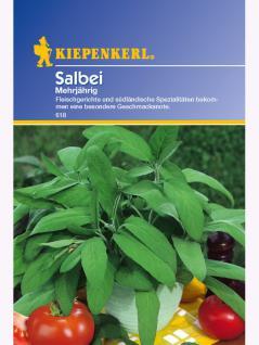 Salbei Salvia officinalis 1000gr