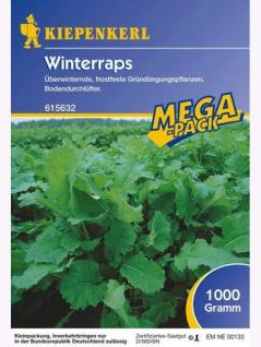 Winterraps 1kg - Vorschau