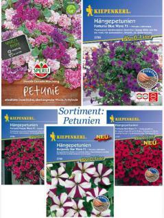 Petunien Saatgut Sortiment - 5 Päckchen gemischt Kiepenkerl Sperli