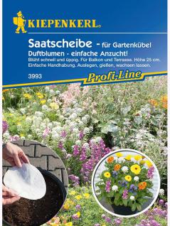 Niedrige Duftblumen Saatscheibe (16cm-Maxischeibe für Kübel)