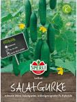 Gurke Mini-Salatgurke Lothar F1