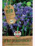 Sperli BIO Blausternchen Scilla siberica