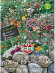 Niedrige Blumenmischung, Sperling`s Blütenteppich