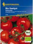 Tomaten Diplom Bio-Saatgut